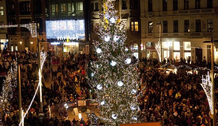 Vánoční strom si Brňané opět vyberou hlasováním