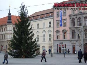 Náměstí Svobody už vévodí vánoční strom