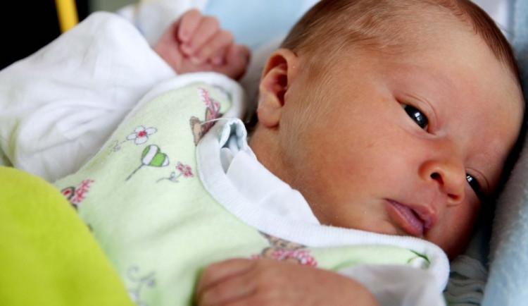 Trend poklesu porodnosti se na jihu Moravy loni zastavil