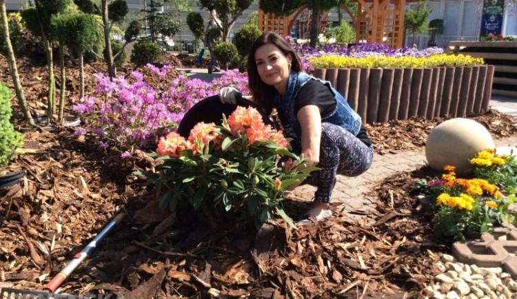 Hanka Kynychová na výstavišti vybírala květiny. Vyzkoušela i posilovnu