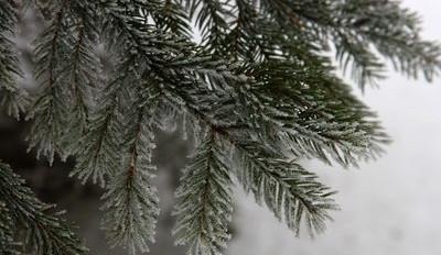 SJÍZDNOST: Mlha a místy i ledovka komplikují dopravu