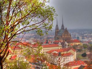 Město nabídne občanům poradenskou linku ve věcech životního prostředí