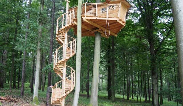 Tree house nabízí relaxaci v koruně stromu