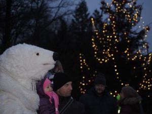 Vánoční strom a charitativní jarmark na Mniší hoře