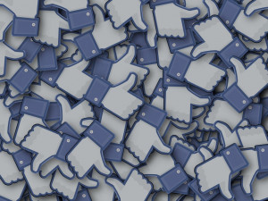 Přespání v IKEA Brno nebo zápasy cikád. Facebook zaplavily desítky absurdních událostí