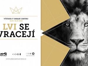 """Výstava """"Lvi se vracejí"""" přiblíží projekt připravované lví expozice v zoo"""