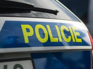 Policisté pátrají po dalších obětech drzé podvodnice