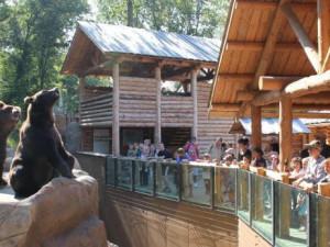 Brněnskou zoo letos navštívilo už více než tři sta tisíc lidí