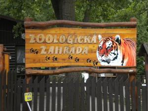 Z koutku pro domácí zvířata vyrostla v Hodoníně oceňovaná zoo. Letos slaví 40 let