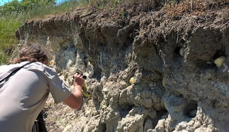 Ornitologové, skauti a dobrovolníci obnovili ptačí hnízda, která kdosi ucpal montážní pěnou