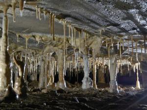 Jedinečná příležitost pro milovníky jeskyní. O víkendu se otevře nepřístupná Michálka a Holštejnská