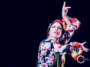 Mezinárodní kytarový festival v Brně nabídne světově proslulé kytaristy či slavnou tanečnici flamenca