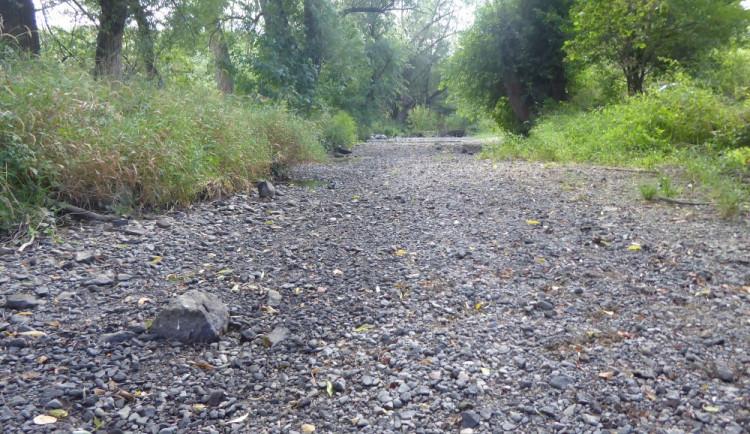Vodní toky na Moravě dál vysychají. Omezení se poprvé dotknou i Baťova kanálu