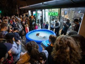 FOTO/VIDEO: Legendární Snowboard Zezula otevřel nové patro brněnského obchodu ve velkolepém stylu
