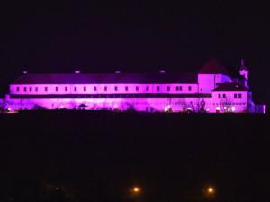Špilberk se opět zbarví do purpurové. Připomene tak Světový den předčasně narozených dětí