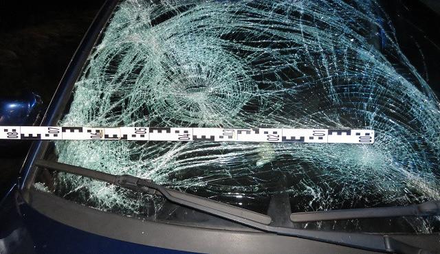 Muž šel po setmění po špatné straně silnice a bez reflexních prvků, srazilo ho auto