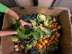 Mendelova univerzita se pustila do boje proti plýtvání potravin