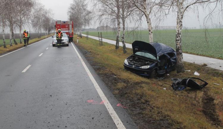 FOTO: Novoroční jízda skončila ve stromě.Řidiče transportoval vrtulník