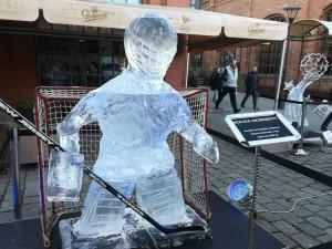 FOTO: Brankář Komety, Petrov, Mamlas. U Vaňkovky začala výstava ledových soch