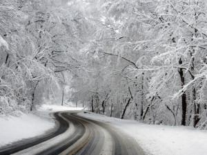 POČASÍ NA PONDĚLÍ: Od rána bude sněžit, odpoledne srážky ustanou