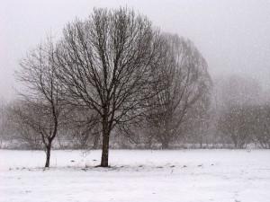 POČASÍ NA ČTVRTEK: Teploty přes den okolo nuly, místy může lehce zasněžit
