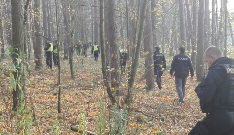Desítky policistů pátraly po osmdesátileté seniorce, která se nevrátila domů. Ležela podchlazená v lese