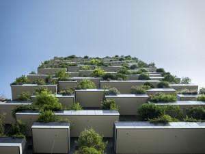 Brno chce postavit na Kamenném vrchu 300 bytů za 900 milionů
