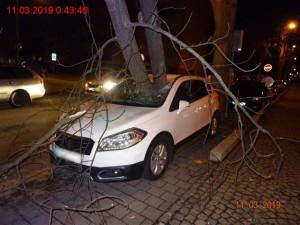 FOTO: Silný vítr zanechal značné škody i v Brně. Řidič auta může mluvit o velkém štěstí