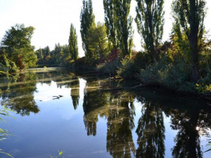 Brno nechá odčerpat bahno z Holáseckých jezer. Revitalizace přírodní památky vyjde na desítky milionů