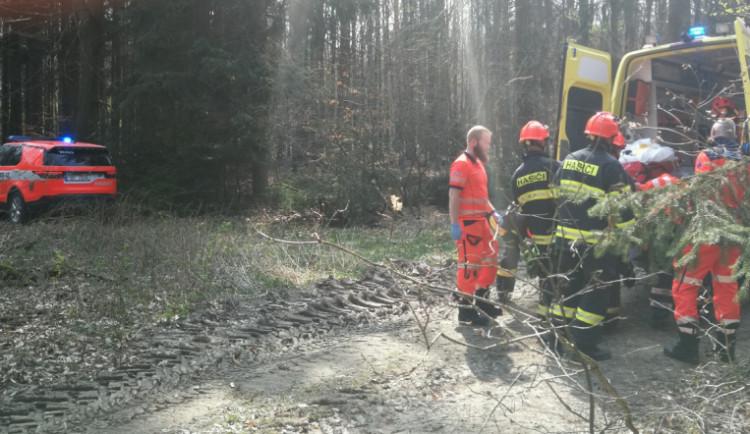 Při práci v lese na Vyškovsku spadl na muže strom, se středně těžkým zraněním skončil v nemocnici