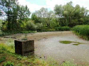 V Národním parku Podyjí dokončili opravu rybníku za miliony korun. V létě nejspíš vyschne
