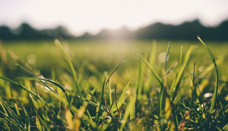 POČASÍ NA SOBOTU: První červnový den bude slunečný, ale větrný. Přeháňky hrozí jen ojediněle