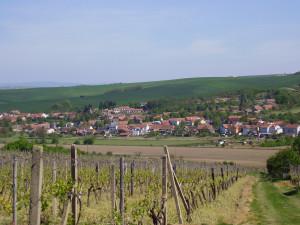 Jihomoravskou vesnicí roku jsou Morkůvky na Břeclavsku