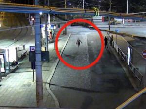 VIDEO: Mladá zlodějka okradla muže spícího na Mendláku. Ukradené věci si nastrkala do podprsenky