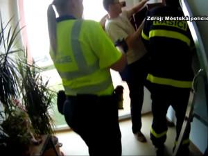 VIDEO: Bytový dům v Žabovřeskách obsadily desítky netopýrů