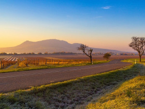 Na jižní Moravě se za první pololetí zvýšil počet obyvatel téměř o dva tisíce lidí