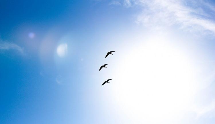 POČASÍ NA NEDĚLI: Nebe bez mráčku a teploty k pětadvacítce