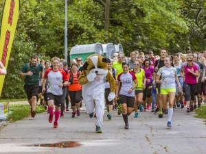 I běháním můžete pomoci. V neděli doslova probíhá akce Běhejme a pomáhejme útulkům