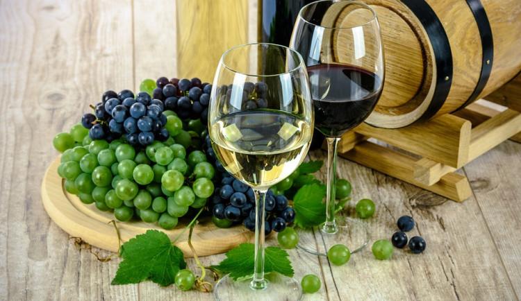 Mladé víno není jen svatomartinské, na Moravě jej už ochutnávají
