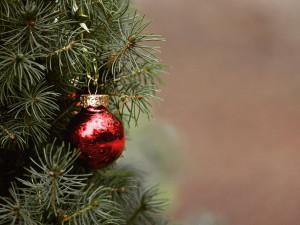 Muž se v Brně snažil uhasit hořící vánoční strom. Nakonec ho vyhodil z okna