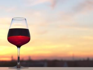 Nejlepší vína na světě jsou z Moravy a Čech. Naši vinaři si ze světa loni přivezli 990 medailí
