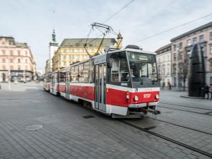 Toulavý pejsek se v Brně projížděl šalinami. Chycení unikal díky přestupům