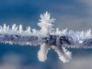 POČASÍ NA PONDĚLÍ: K ránu se může objevit ledovka, odpoledne teploty až tři stupně nad nulou