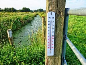Na jižní Moravě včera padaly teplotní rekordy. Teploměry naměřily téměř patnáct stupňů