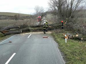 V České republice evidují hasiči téměř pět tisíc výjezdů kvůli silného větru. Na jižní Moravě téměř dvě stovky
