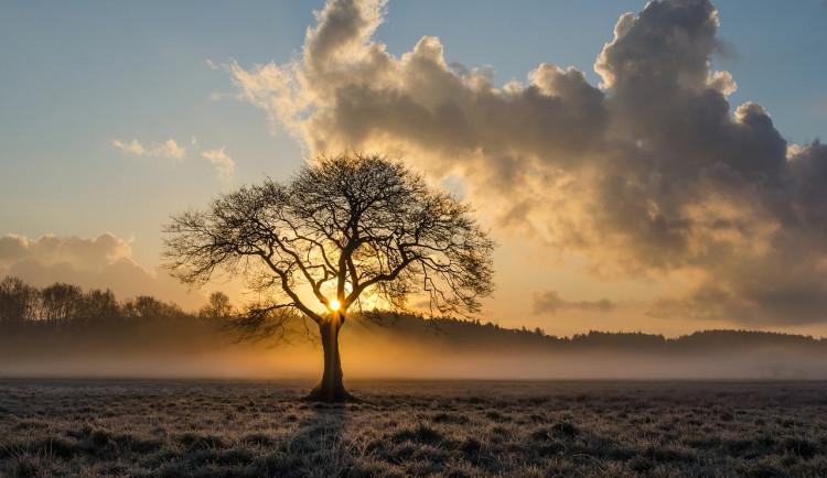 POČASÍ NA PONDĚLÍ: Ze zataženého nebe občas vykoukne sluníčko, teploty jako na jaře