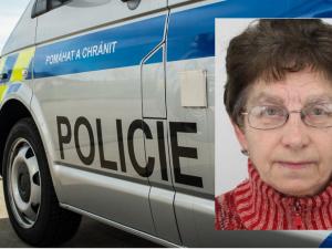 PÁTRÁNÍ: Policisté na Hodonínsku pátrají po této ženě. Její kolo a tašku našli u břehu řeky