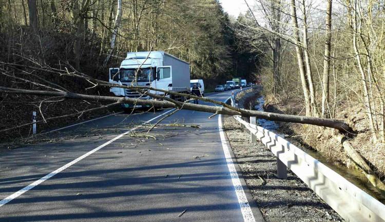 Na jihu Moravy kvůli větru znovu padají stromy, zasahují hasiči