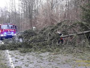 FOTO: Přes jižní Moravu se přehnal silný vítr, tisíce domácností byly bez proudu