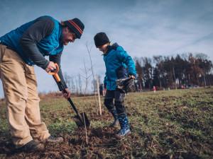 Studenti Mendelovy univerzity budou pomáhat zemědělským a lesnickým firmám, kvůli koronaviru chybí pracovníci